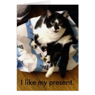 Katten tackar dig för min julklappkort hälsningskort