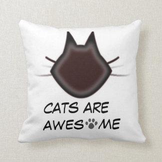 Katter är enorma kudde