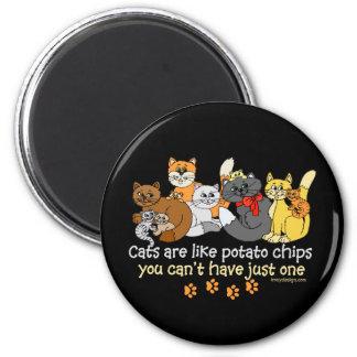 Katter är lika potatischiper magnet rund 5.7 cm