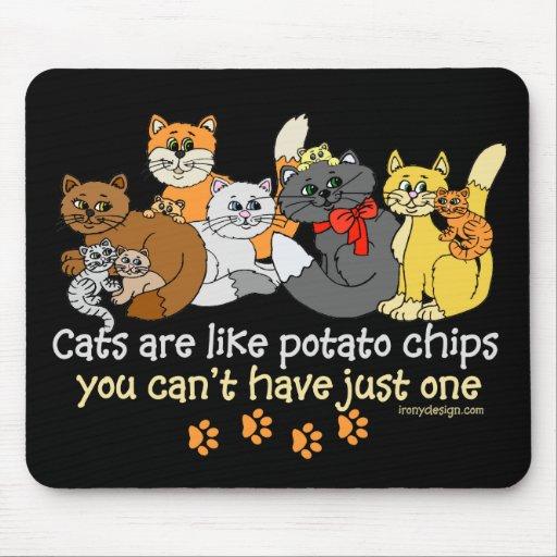 Katter är lika potatischiper mus mattor