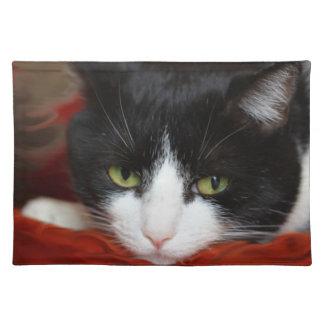 Katter Bordstablett