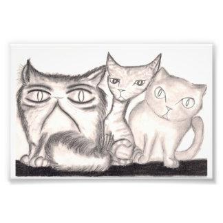 Katterna Fototryck