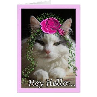 Kattkort, Hey hejer Hälsningskort