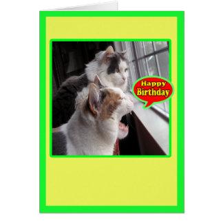 Kattkort, roligt grattis på födelsedagenrop ut hälsningskort