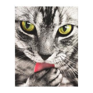 Kattporträtt Canvastryck