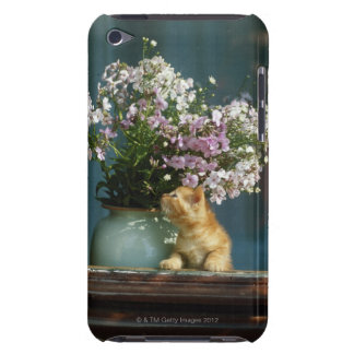 Kattsitta förutom blommavasen på fönstersill barely there iPod fodral