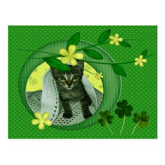Kattunge, blommor, Shamrocks & gröntpolka dots Vykort