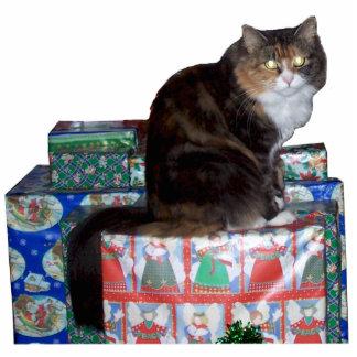 Kattunge med presenterprydnaden fotoskulptur julgransdekoration