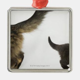 Kattunge som tittar upp på dess mödrarsvan julgransprydnad metall