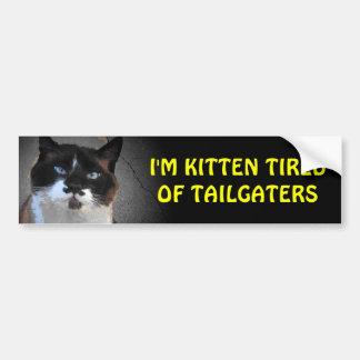 Kattunge som tröttas av Tailgaters kattstativ det Bildekal