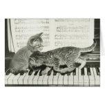 Kattunge som två leker på pianotangentbord, (B&W) Kort