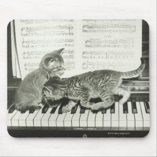 Kattunge som två leker på pianotangentbord, (B&W) Musmatta