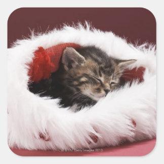 Kattunge sovande i julhatt fyrkantigt klistermärke