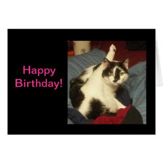Kattungefödelsedagkort Hälsningskort