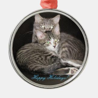 Kattungefoto Rund Silverfärgad Julgransprydnad