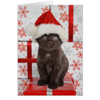 Kattungejulkort Hälsningskort