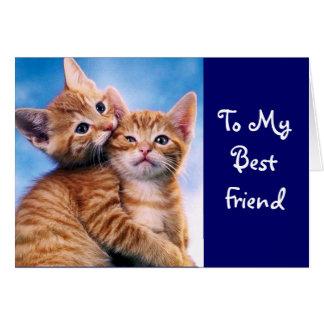 Kattungekärlek Hälsningskort