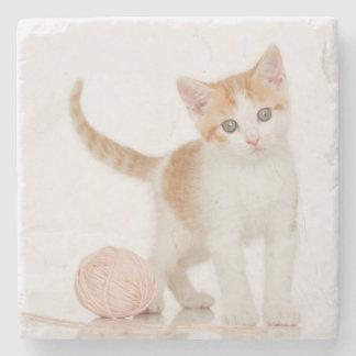 Kattungen bredvid boll av stränger stenunderlägg