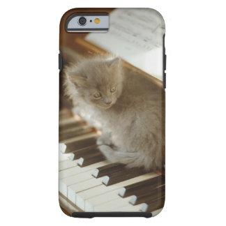 Kattungesitta på pianotangentbord, närbild tough iPhone 6 case