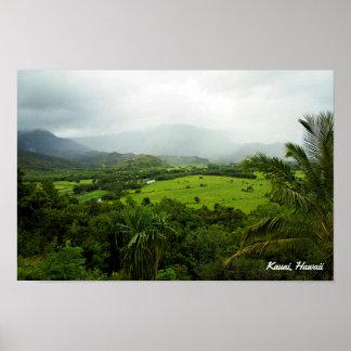 Kauai Hawaii landskap plats Poster
