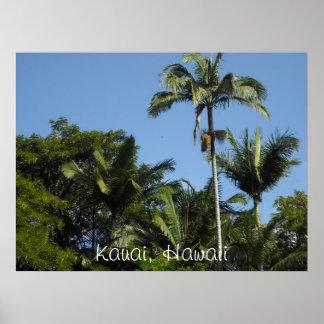 Kauai Hawaii Poster