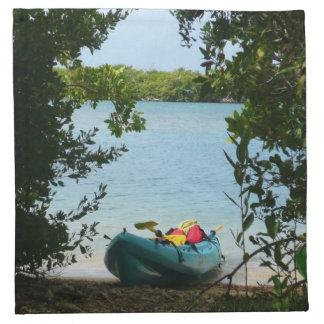 Kayaking i St Thomas US Virgin Islands Tygservett