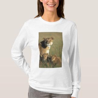 Kenya den MasaiMara leken reserverar, lejona ungar Tee Shirts