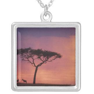 Kenya: MasaiMara nationalpark, Sunset. Silverpläterat Halsband