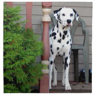 Kevin dalmatianen tygservett