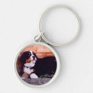 Keychain för valp för Bernese berghund Rund Silverfärgad Nyckelring