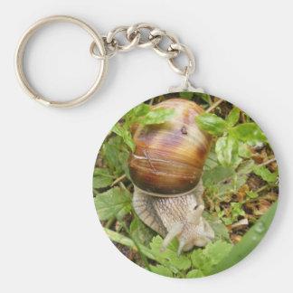 Keychain med snail.en rund nyckelring