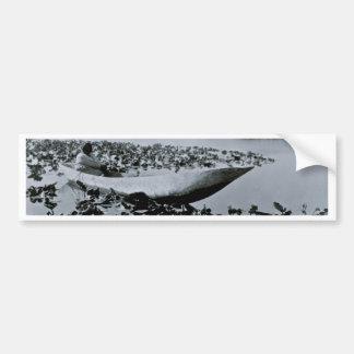 Klamath indian grävd ut kanot bildekal