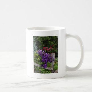Klättra den purpurfärgade clematisen kaffemugg