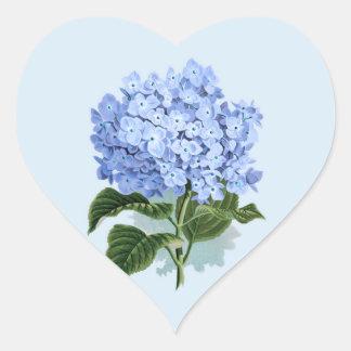 Klistermärke för blomma för vanlig hortensia för