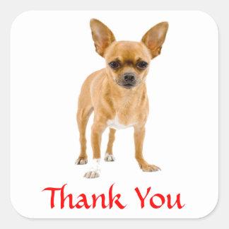 Klistermärke för hälsningar för hund för