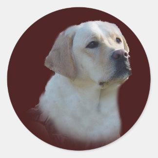 Klistermärke för Labrador Retriever