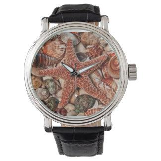 klockasnäckskal armbandsur