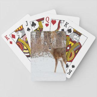 Knäppas bockhjort i snöig fält för vintervit spelkort
