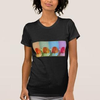 KnoppShowsamling - 1 T-shirt