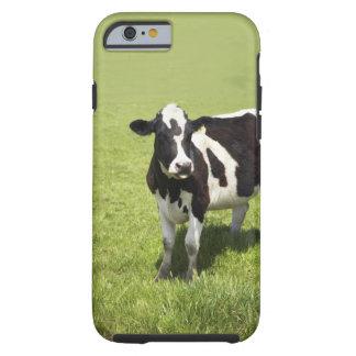 Ko i äng tough iPhone 6 fodral