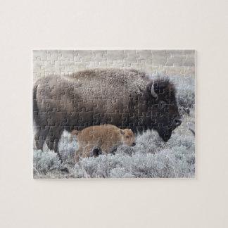 Ko- och kalvBison, Yellowstone 2 Pussel