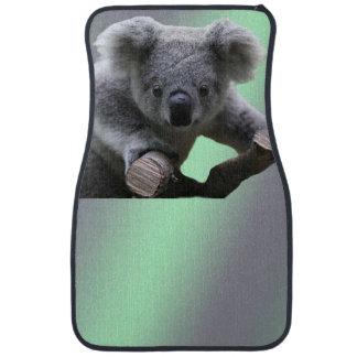 Koalabjörn Bilmatta