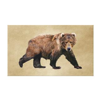 Kodiakbjörn Canvastryck