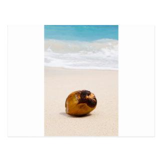 Kokosnöt på en tropisk strand vykort