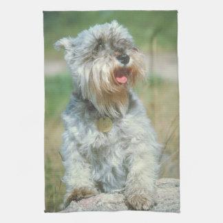 Kökshandduk för miniatyrSchnauzerhund