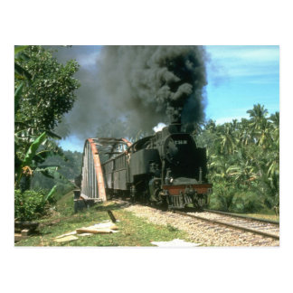 Kol tömmer för Padang Panjang hauleds av 2-6- Vykort