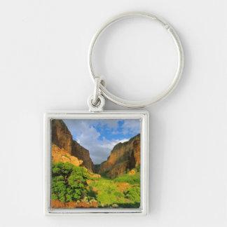 Kolob kanjon på den Zion kanjonen i den Zion medbo Fyrkantig Silverfärgad Nyckelring