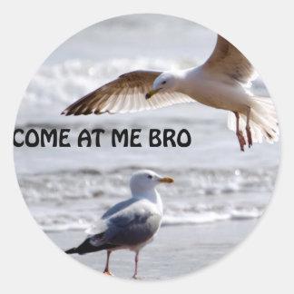 Kom på mig bro! Fiskmåsversion Runt Klistermärke