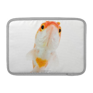 Komet/Komet-tailed guldfisk MacBook Sleeve