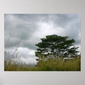Kommande storm - Kauai, HI Poster